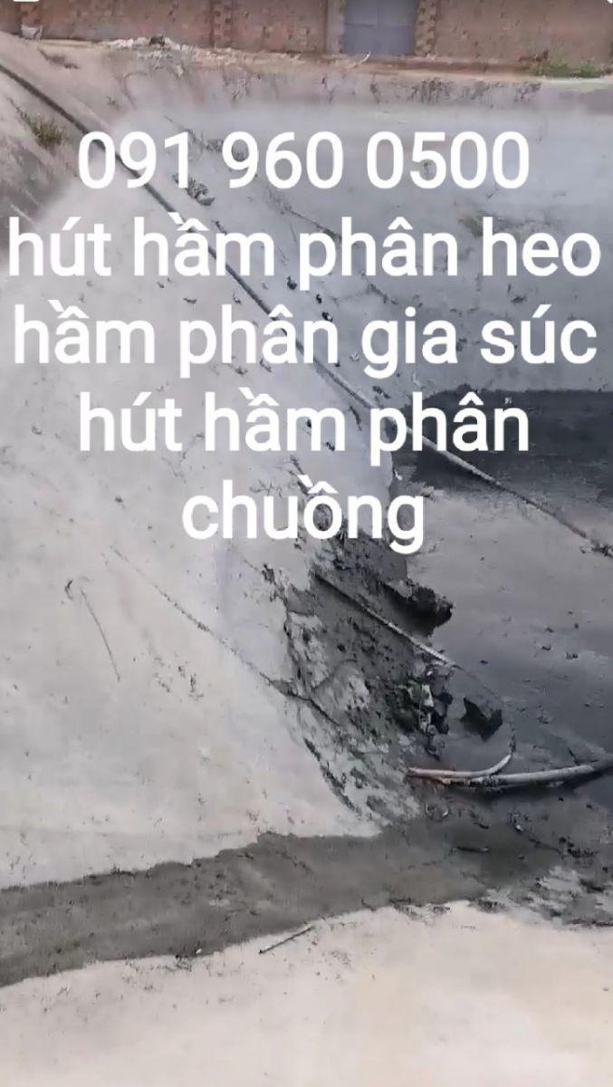 Công ty của chúng tôi hiện nay có 37 chi nhánh nằm rải rác trên khách các quận huyện thành phố Hồ Chí Minh , và các tỉnh thành phố lân cận như Bình Dương .Đồng nai- Long An- Tây Ninh - bến tre - sóc Trăng - cà mau - và bạc liêu.